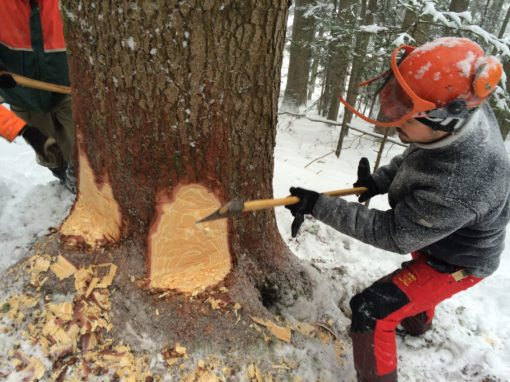 Handholzen im Convers BE
