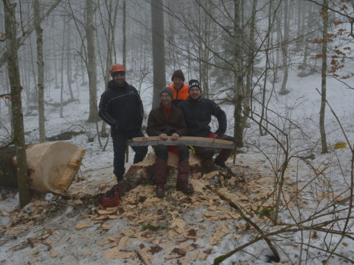 Handholzen in Les Savagnières BE